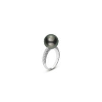 MRA10241BDXWR065 Mikimoto Black South Sea Pearl and Pave set diamond ring in white gold marsahll pierce chicago